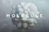 3D Molecule Shapes
