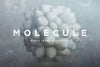 3D Molecule Shapes - Collection - RuleByArt
