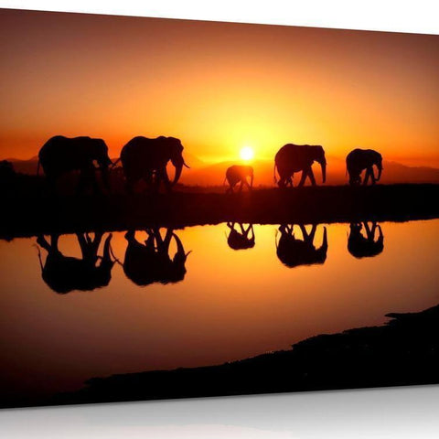 Sunset African Elephant Canvas