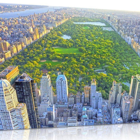 New York Central Park Canvas