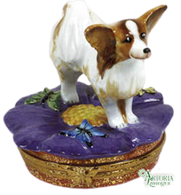 Load image into Gallery viewer, SKU# 7647 - Papillon Dog