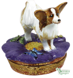 SKU# 7647 - Papillon Dog