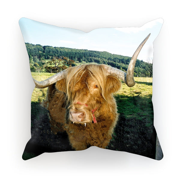 Highland Cow 16 Cushion