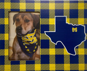Check Picture Frame with Texas
