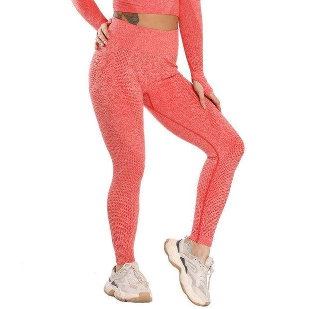 High Waist Seamless Legging-Just Women Leggings