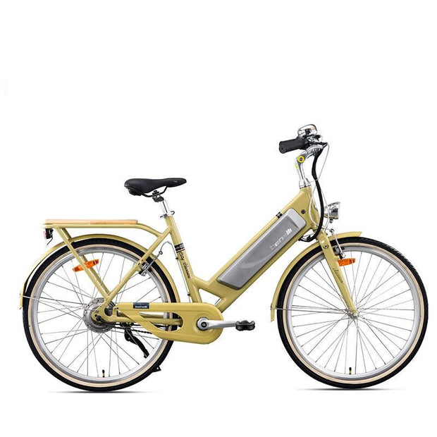 26 inch Electric bicycle 48v lithium battery city bicycle pedal ebike ladies-Pro eRiders