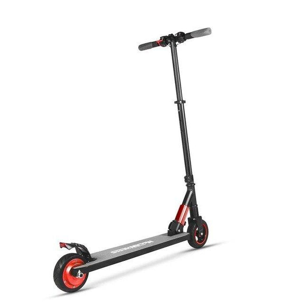 250W Aluminum Alloy Shockproof Motor Scooter-Pro eRiders