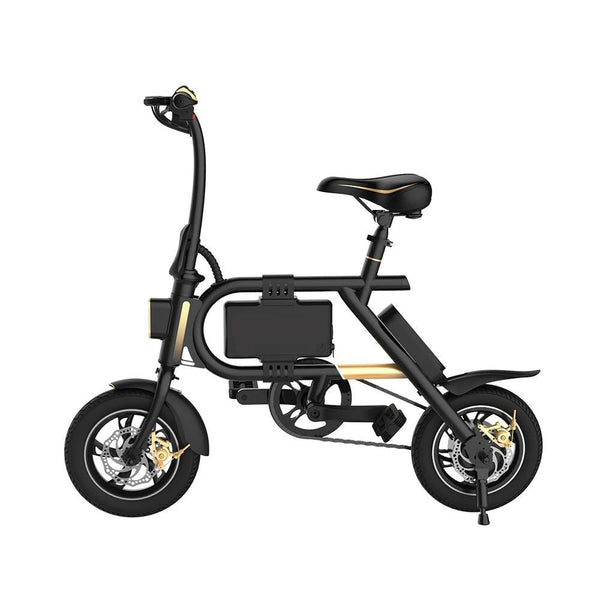 INMOTION P2 Electric Bicycle 36V 7.8Ah 350W-Pro eRiders