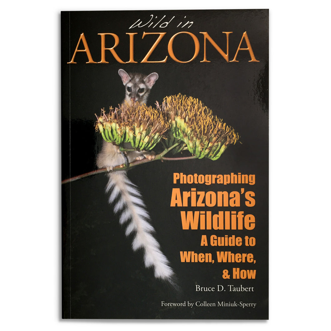 Wild in Arizona: Photographing Arizona's Wildlife