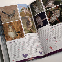 Load image into Gallery viewer, Stokes Field Guide to Birds Western Region