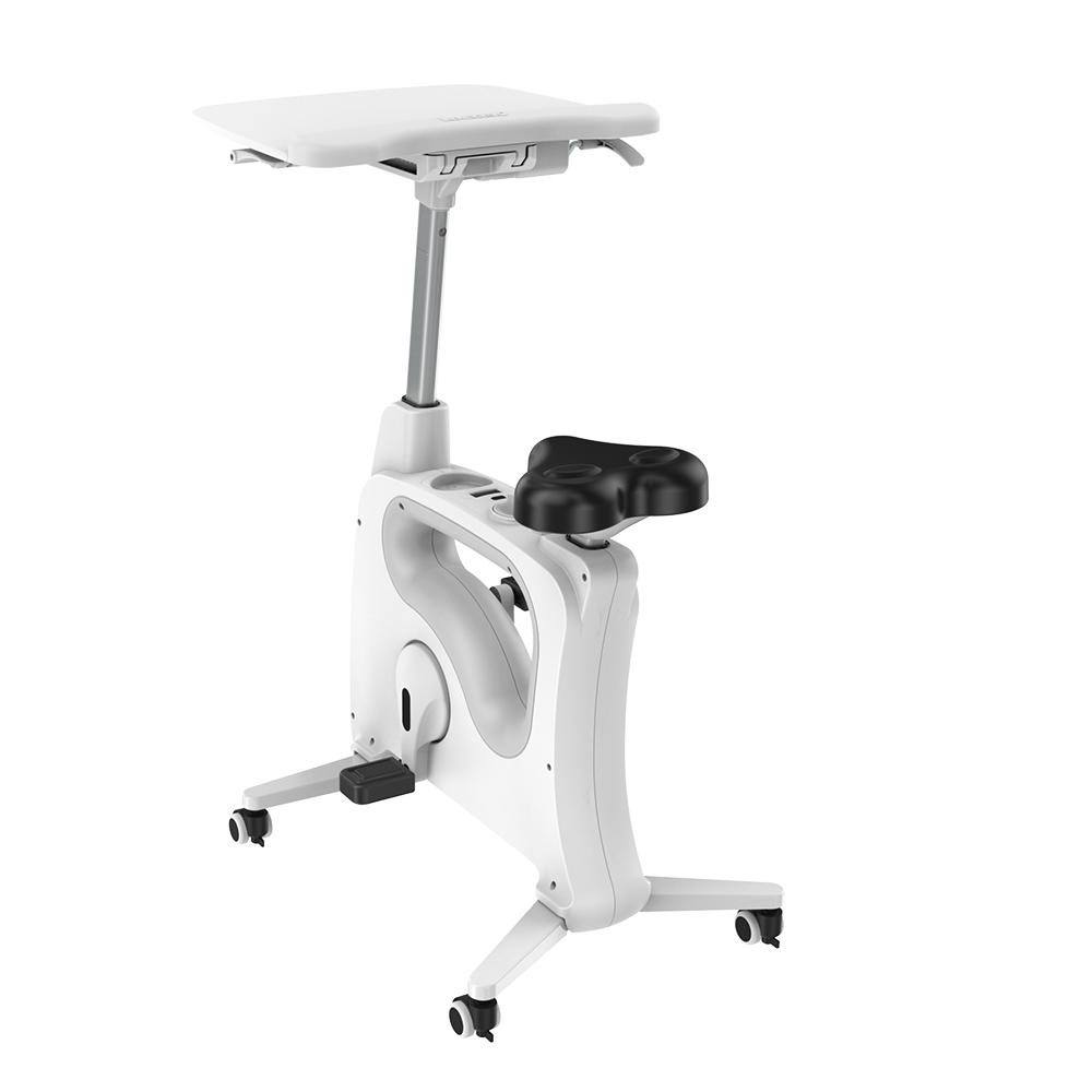 Loctek FlexiSpot V9 by Active Goods Canada back of FlexiSpot Desk Bike