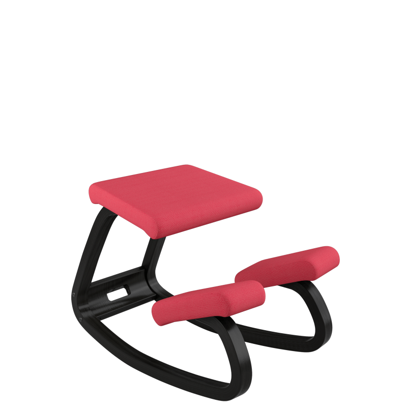 Varier Variable Balans - Custom order with back rest by Active Goods Canada
