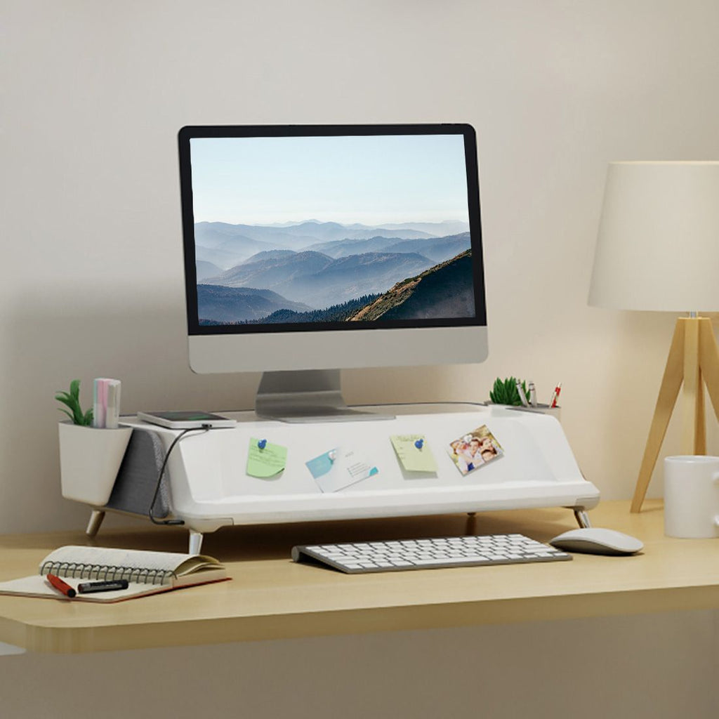 FlexiSpot MonitorStand Workstation from Active Goods Canada