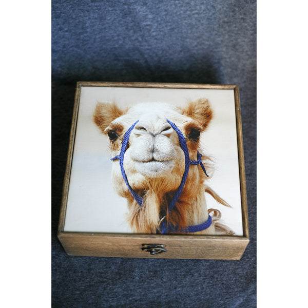 """Billy The Camel"" Handmade Ash Wood Box - NotInTheMalls"