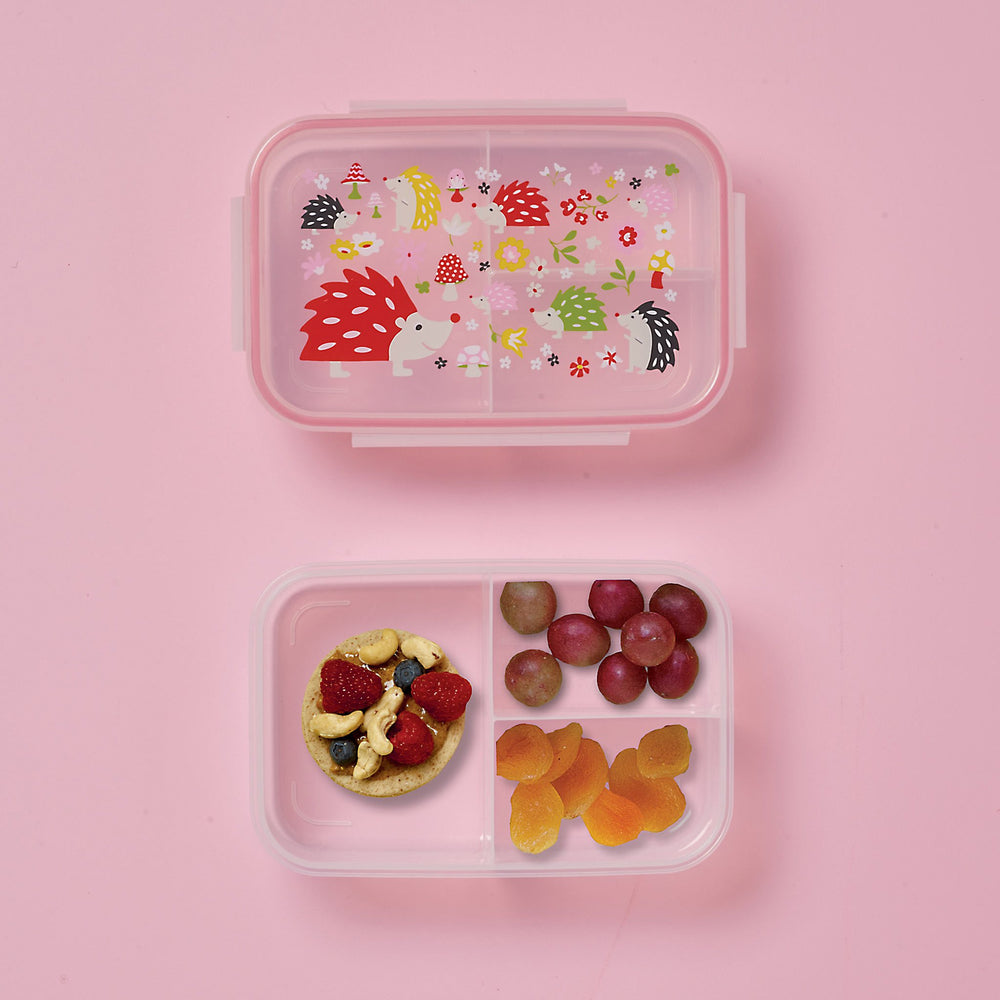 Good Lunch Bento Box | Hedgehog