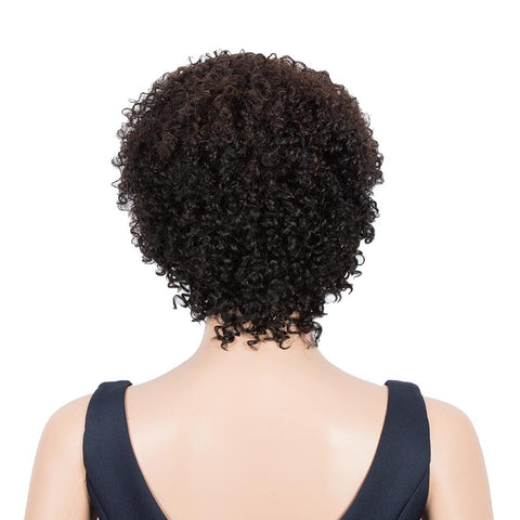 Short Pixie Wigs 100% Human Hair Kinky Curly Wig For Black Women