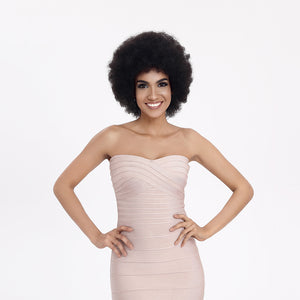 Rebecca Fashion Black Curly Afro Wig Human Hair Wigs for Black Women