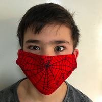 Special Edition WEB face mask