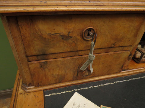 Antique Pine Bank of Drawers Plan Chest