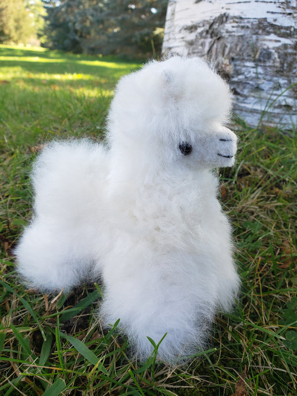 Alpaca Stuffy- White