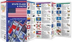 Waterford Press a Pocket Naturalist Guide: STATE FLAGS & FACTS by Kavanagh/Leung