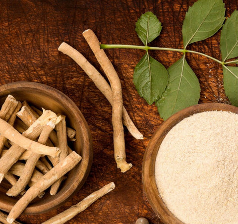 Adaptogens and Your Health