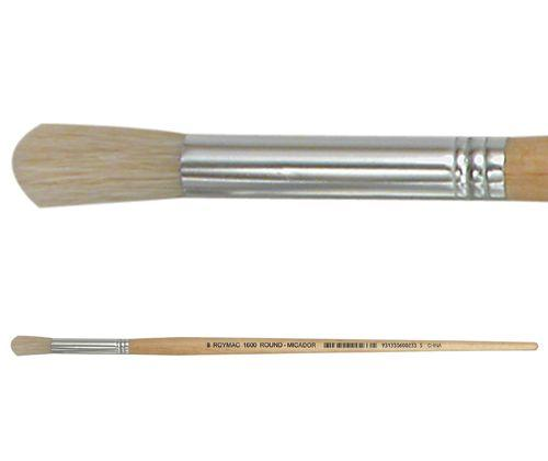 Paint Brushes 6pc