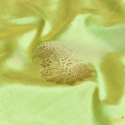 Yellow-Pista Green Cross shade Pure Silk Banarasi Handloom Saree