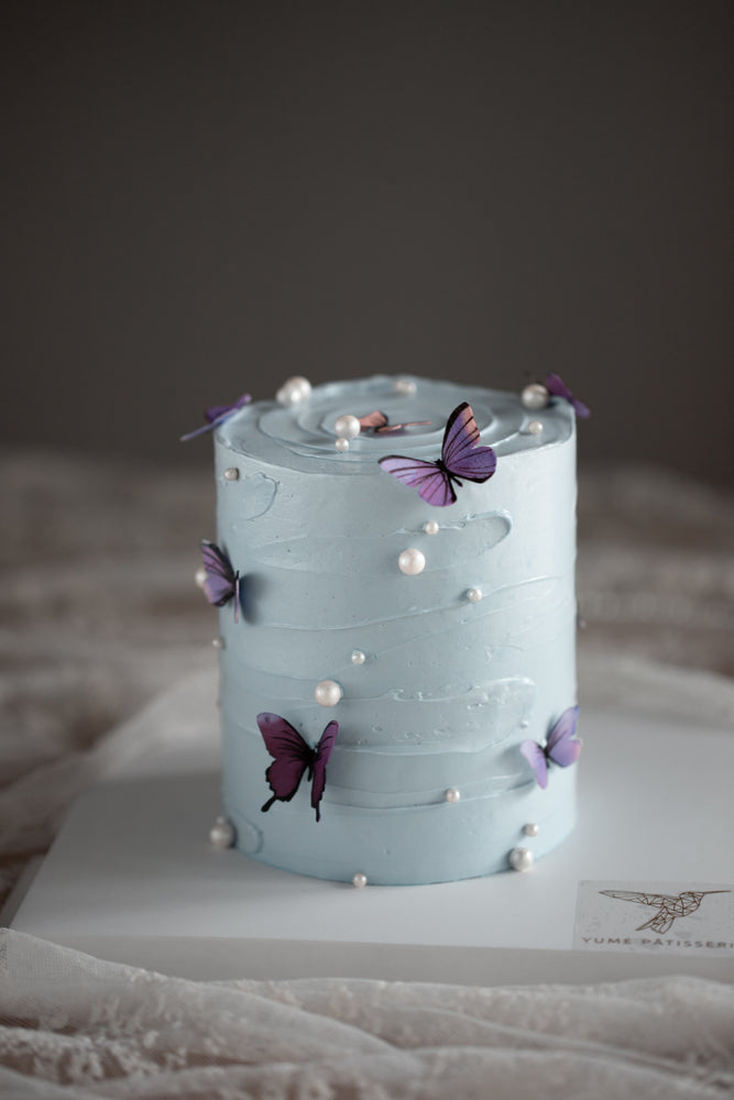 Handpainted Butterfly Cake