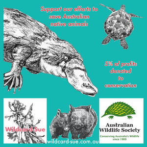 ANNOUNCEMENT: partnership with Australian Wildlife Society