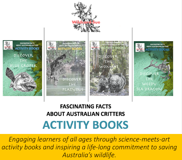 Activity Book Project 2021