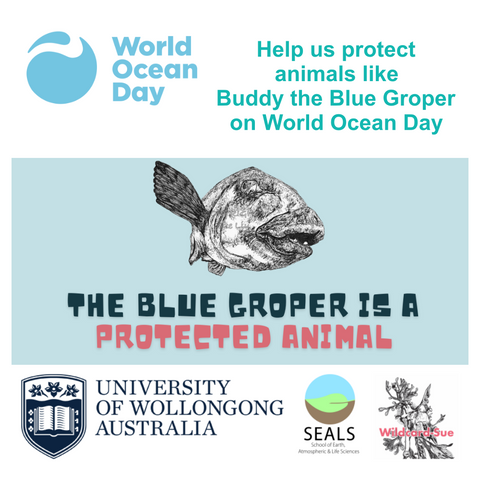 Collaboration with Wollongong University for World Ocean Day