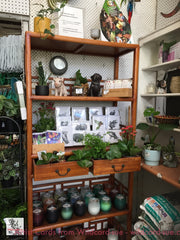 Check the shelf at Annandale Garden Central