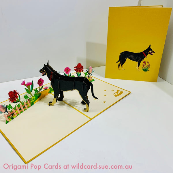 Black Kelpie Origami Pop Card