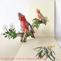 Galah Origami Pop Card