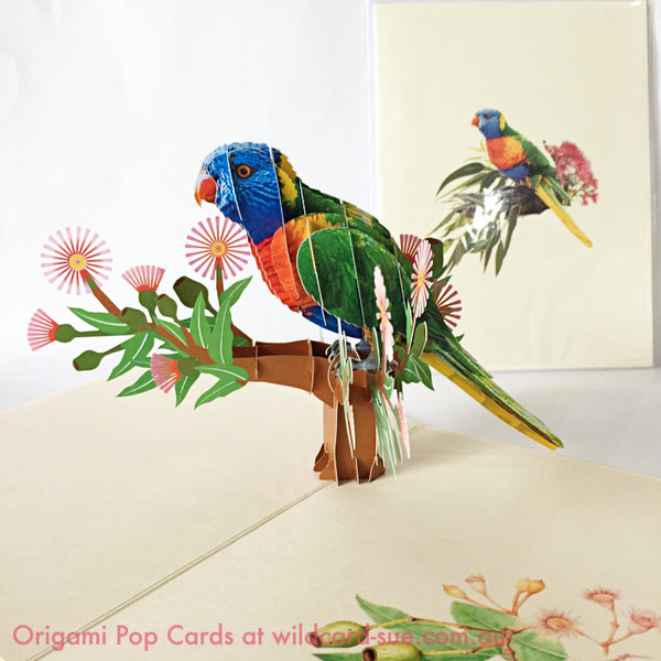 Lorikeet Origami Pop Card