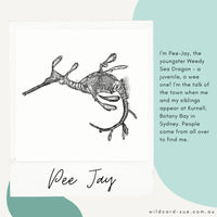 Weedy Sea Dragon - Pee Jay the Weedy Sea Dragon