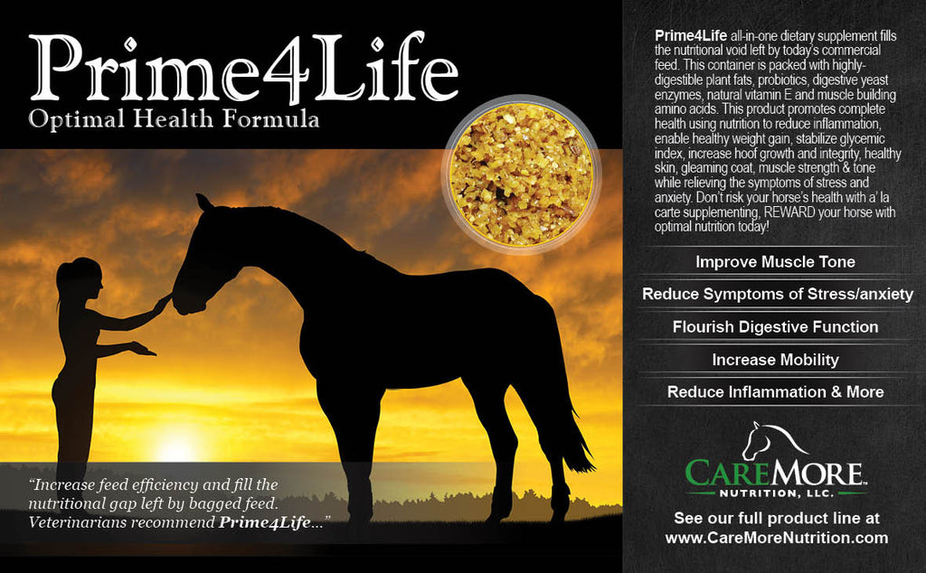 Image of front label of Prime4Life Equine Wellness formula. We use CoolBlend Technology™ to preserve the integrity of live cultures in our formulas. Gain, Seniors, Rescues, OTTB, Omega 3, High Fat Supplement, all natural, safe