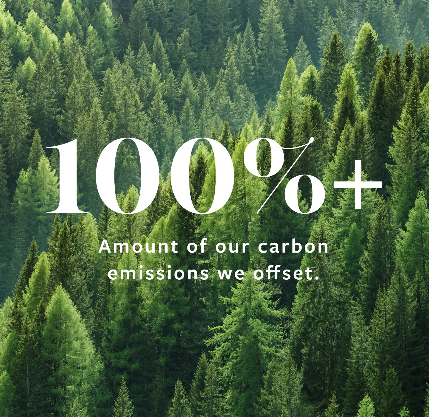100 Percent of Carbon Emissions Offset