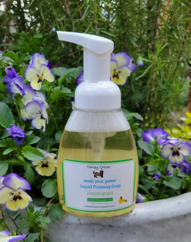 Wash Your Paws! Liquid Foaming Soap