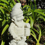 Vintage Gnome w/ Frog