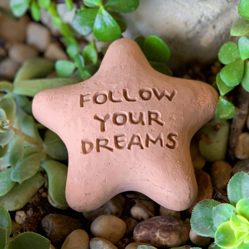 Follow Your Dreams - Shooting Star Spirit Stone