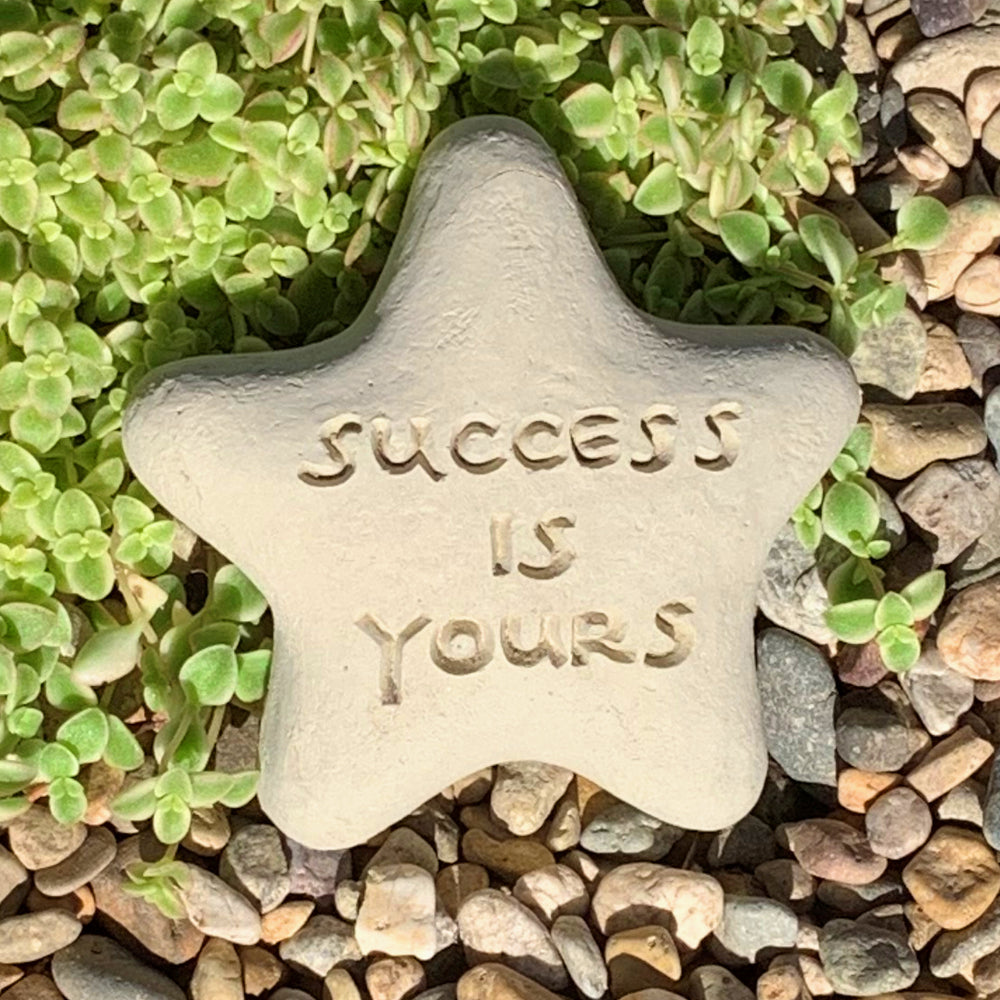 Success is Yours - Shooting Star Spirit Stone