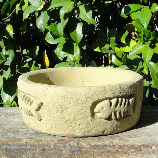 cat bowl small stone
