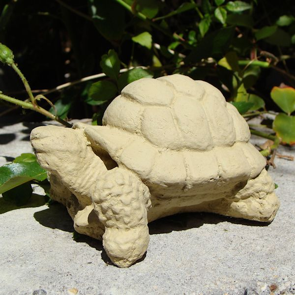 Desert Turtle (Small)