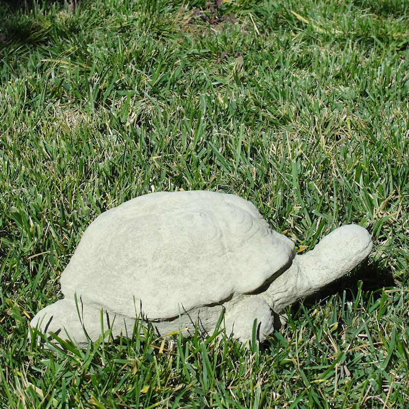 Load image into Gallery viewer, Vintage Desert Tortoise #1