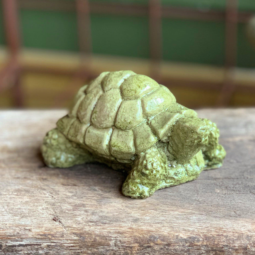 Load image into Gallery viewer, Desert Turtle (Small)