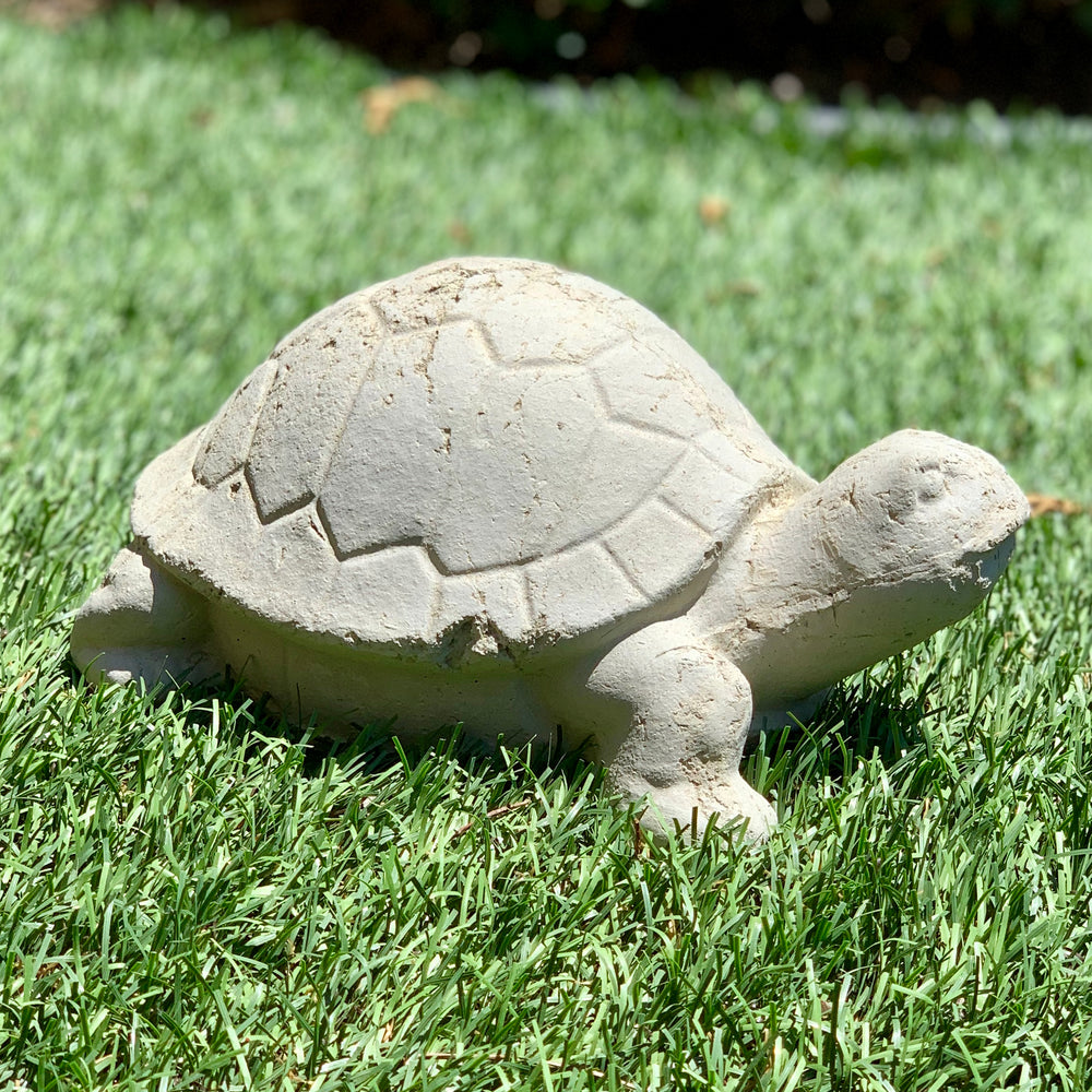 Load image into Gallery viewer, Vintage Desert Tortoise #2