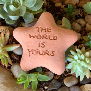 The World Is Yours - Shooting Star Spirit Stone