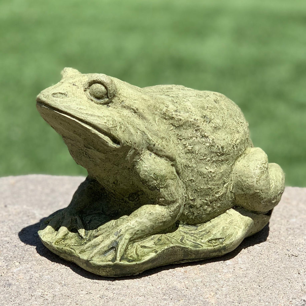 Load image into Gallery viewer, Frog on Lilypad